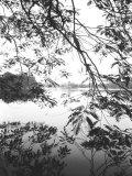 Hoan Kiem Lake View  Hanoi  Vietnam