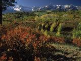 Sneffels Range in Fall  San Juan Mountains  CO