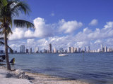 Miami Skyline  FL
