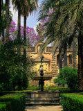 Reales Alcazares  Santa Cruz  Seville  Spain