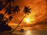 Sunset at Pigeon Point  Tobago  Caribbean
