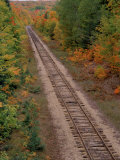 Railroad Tracks Between Autumn Foliage  MI