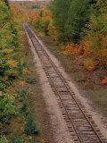 Railroad Tracks Between Autumn Foliage  MI