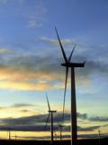 Wind Turbines at Sunset  Caithness  Scotland