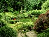 Pond Garden  Japanese Garden Portland USA