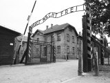 Entrance Gate with Hypocritcal in Work There is Freedom Banner  Auschwitz  Poland