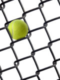 Tennis Ball in Fence