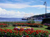 Garden at Esplanade  Argyll  Scotland