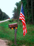 American Flag on Rural Mailbox  North Florida