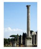 Foro Romano - Roman Forum - Rome