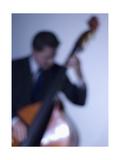 Bassist 2
