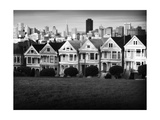 Painted Ladies Mono