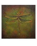 Dragonfly Trina