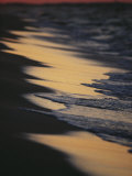 Surf Gently Lapping on a Sandy Beach at Twilight