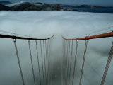Cables of the Golden Gate Bridge Stand Above the Early Morning Fog