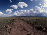 A Dirt Road Leads to the Horizon