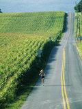 A Woman Jogs Down a Country Road Alongside a Field of Corn