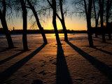 Twilight Winter View Near St Petersburg