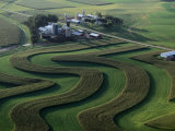 A Farm with Curved and Twisting Fields