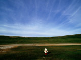 A Fire Hydrant in a Green Field under a Wide Blue Sky