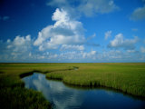 Marsh Canal in Oyster Bayou