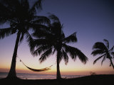 Twilight View of Beach with Hammock and Palms  Costa Rica