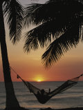 Sunset on Beach with Silhouetted Hammock and Palms  Costa Rica