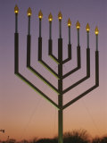 National Menorah  Elipse  Washington  DC
