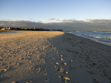 Cape Cod Foot Prints on Sandy Beach in Chatham  Massachusetts