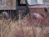 An Abandoned Old Truck Sits in a Field of Autumn Colored Grasses