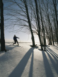 A Cross-Country Skier Blazes a Trail in the Snow