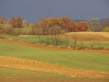 Pastoral View of Rolling Fields and Autumn Foliage