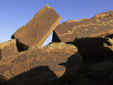 Petroglyphs Near Little Colorado River  Arizona