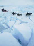 Huskies Carry a Sled Across Broken Ice During an Expedition Traversing the North Pole