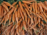 Stacks of Carrots at an Open-Air Vegetable Market in Macon