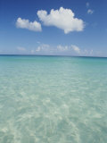 Aquamarine Water Bleeds into Blue Skies in This Tropical View