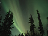 The Northern Lights Illuminate the Evening Sky over North Pole