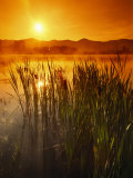 Sunrise over a Misty Pond and the Presidential Mountains