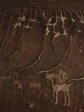 Indian Petroglyph Depicting a Mountain Sheep