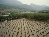 Children Practice Kung Fu in a Courtyard at the Ta Gou Academy