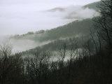 Fog in the Valley Near Fishers Gap  Along Skyline Drive