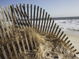 A Sand Fence Used to Control Dune Erosion