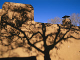 Shadows of Branches Highlight an Adobe Wall in Old Santa Fe