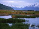 Potter Marsh under the Chugach Mountains