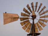A Bird Perches on a Windmill at the Historical Steven's Creek Farm