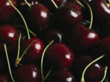 Fresh Sweet Cherries with Stems