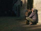 Curious Donkey Inspects a Woman