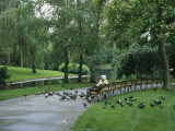 A Woman Feeds Pigeons in the City Park in Vienna