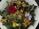 An Edible Salad at the Tilth Harvest Festival in Seattle