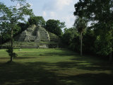 The Jaguar Temple at the Lamanai Archeological Preserve in Belize